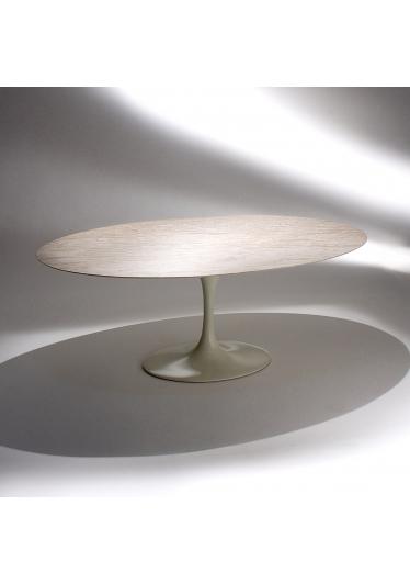 Mesa de Jantar Saarinen Oval Estrutura Alumínio e Aço Pintura Brilhante Studio Mais Design by Eero Saarinen